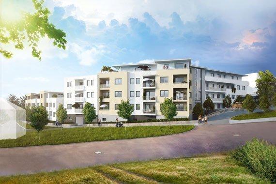 Ein großzuegiges, modernes Wohngebaude mit Grünanlagen